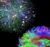 brain-computersnetworks